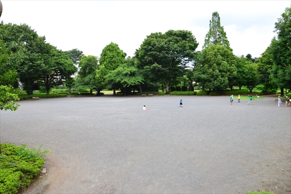 tachikawaparkDSC_3011