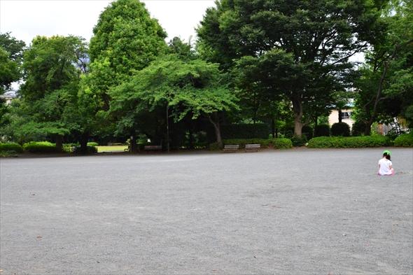 tachikawaparkDSC_3012