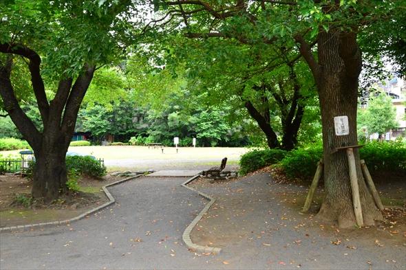 tachikawaparkDSC_3025