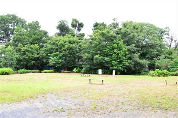 tachikawaparkDSC_3040