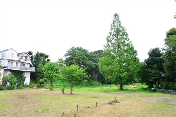 tachikawaparkDSC_3055