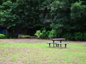 公園の奥にトトロの森?