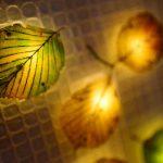 森の灯りに包まれる。アートスペース LaLaLaで「Bibbidi・bobbidi・boo」展開催中
