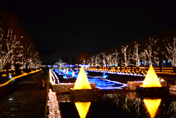 syouwakinenkouen-Winter-Vista-Illumination-2016-14