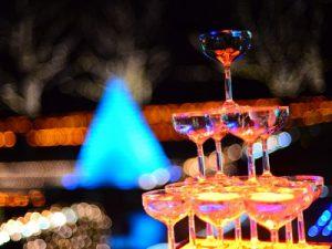立川の光の祭典!昭和記念公園のクリスマスイルミネーション開催中♪