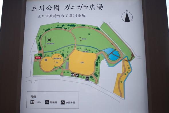 tachikawapark-15