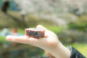 【立川グルメ】お花見には和菓子が上品!恵比寿豆園/きんつばSISTERSに現代の和菓子について聞いてきました。