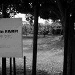 ARTinFARM2019/今年も秋のはじまりを告げるアートインファームが立川富士見町の井上葡萄園で今週末開催。