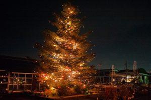 立川カメラ/街の中のクリスマス