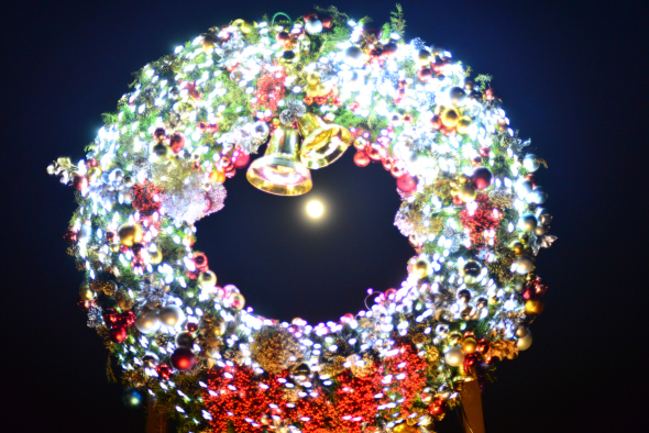 syouwakinenkouen-Winter-Vista-Illumination-2016-1