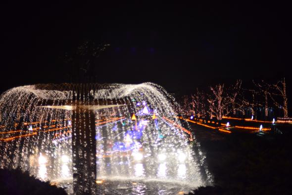 syouwakinenkouen-Winter-Vista-Illumination-2016-13