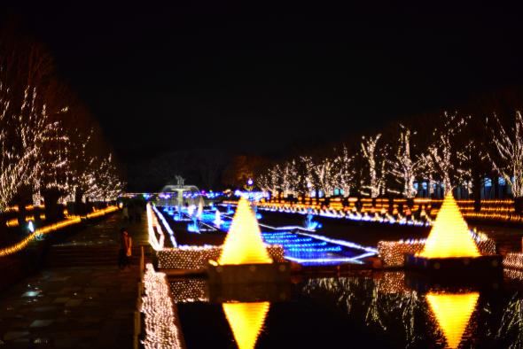 syouwakinenkouen-Winter-Vista-Illumination-2016-14