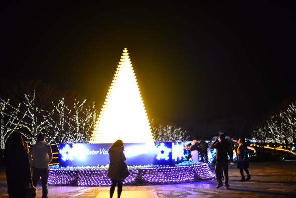 syouwakinenkouen-Winter-Vista-Illumination-2016-2