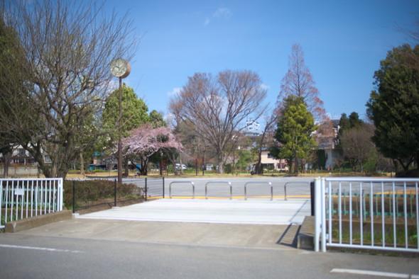 tachikawapark-01