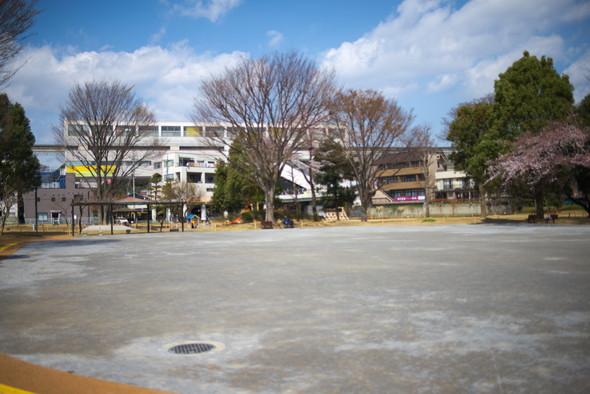 tachikawapark-03