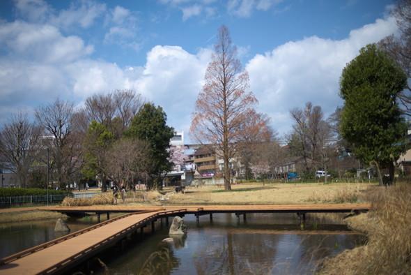 tachikawapark-12