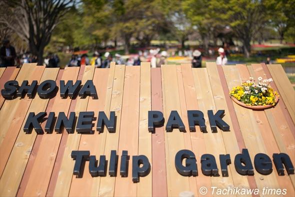 昭和記念公園チューリップガーデン